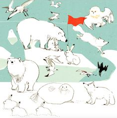 Save The Arctic, Cute Chibi, Reference Images, Children's Book Illustration, Drawing Techniques, Animal Design, Nursery Art, Cute Art, Art For Kids
