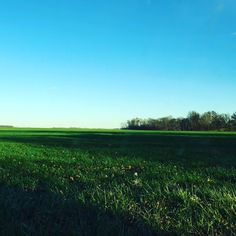 Field near Turkey Run State Park