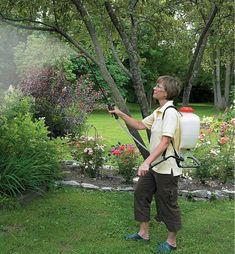 Backpack Sprayer - Lee Valley Tools Garden Care, Pumping, Left Handed, Lower Case Letters, Lee Valley, Backpacks, Weeding, Shoulder Straps, Tools