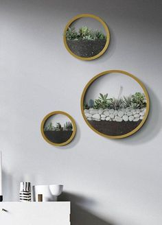 22 Creative Round Plant Pot Wall Hanging Design for Your Home Decor Inspiration - Best Asian travel guide Metal Wall Planters, Indoor Wall Planters, Diy Wall Planter, Concrete Planters, Indoor Plants, Wall Terrarium, Wall Hanging Designs, Orchid Care, 3d Prints