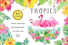 Tropics Watercolour Clipart Set  by Twigs and Twine on @creativemarket