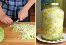 Cabbage Is Your Secret Weapon Against Cancer And Heart Disease!