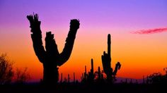 AZ Sunset Apache Junction  by Richard Grzych