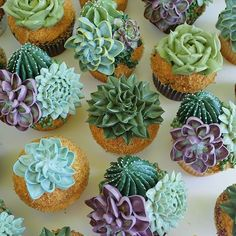 Succulent cupcakes are the perfect pudding for a green wedding colour scheme … - Modern Wedding Color Schemes, Wedding Colors, 3d Jelly Cake, Succulent Cupcakes, Cactus Cake, Salty Cake, Cute Cupcakes, Almond Cakes, Vegan Cake