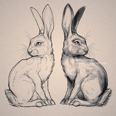 Essi Tattoo & Art - Eläin- ja luontoaiheiset tatuoinnit. — Piirustukset Pencil Drawings Of Animals, Animal Sketches, Bird Drawings, Art Sketches, Drawing Birds, Bunny Tattoos, Rabbit Tattoos, Animal Tattoos, Rabbit Drawing
