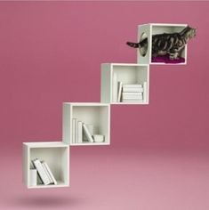 Looking for a way to combine your love of tasteful interiors and your curious cat's love of sleeping in strange places? Check out these 4 IKEA Cat Hacks Diy Kallax, Diy Cat Shelves, Cat Ideas, Ikea Cat, Diy Climbing Wall, Cat Stairs, Kitchen Ikea, Decoration Ikea, Cat Hacks