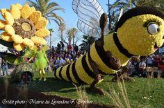 Corso Fleuri 2014 - 1er prix des grands chars et prix du public
