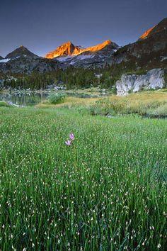 Shooting star beneath Bear Creek Spire, Little Lakes Valley, Eastern Sierra, California, by Galen Rowell