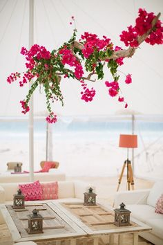 suspended swathe of fuschia bougainvillea - from centre beams at the reception venue