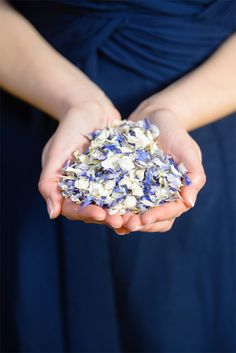 Find out how much confetti you need for your wedding day with the online Shropshire Petals free Confetti Calculator Free Wedding, On Your Wedding Day, Confetti Cones, Confetti Ideas, Velvet Cake Company, Dried Flower Arrangements, Sustainable Wedding, Something Blue Wedding, Blue Bouquet