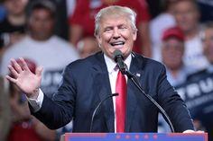 Donald Trump implode