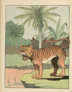 Le Tigre - Le Buffon Choisi by peacay, via Flickr
