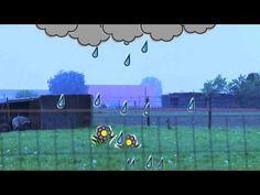 waterkringloop les 5 YouTube sharing - YouTube