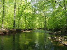 | 3.| Lock Ridge Park, Alburtis | 4.| Weathering Knob, Blue Mountain, Northampton County | 6.| Columcille Megalith Park, Bangor | 7.| Pool Wildlands Conservancy, Emmaus | 8.| Ridley Creek State Park, Newtown Square