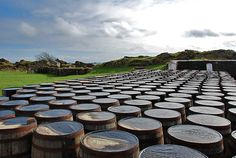 Barrels at Ardbeg. Isle Of Islay, Single Malt Whisky, Scotch Whisky, Wine And Spirits, Barrels, Distillery, Whiskey, Places To Visit, Ocean
