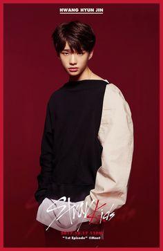 Stray Kids (스트레이 키즈) Chan/Woo Jin/Jisung/Felix/Min Ho/Chang Bin/Hyun Jin/Seung Min/Jeong In