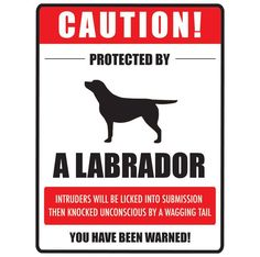 That's about right! [Lab Cool] Labradors Worldwide LabradAwesome Lab Designs Giveaway – Its a Lab Thing