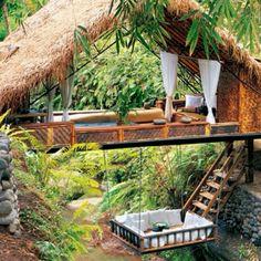 dreams, bali island, dream come true, cali dream, beauti place, tree houses, bali indonesia, backyard, jungl dream