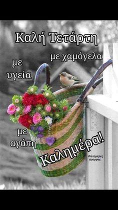 Good Night, Good Morning, Beautiful Pink Roses, Morning Pictures, Greek Quotes, Anastasia, Google, Facebook, Hair