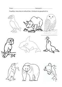 Alphabet Activities, Preschool Activities, Arctic Animals, Bear Cubs, I School, Crafts For Kids, Blog, Winter Time, Cubs