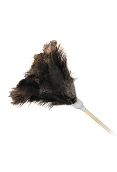 Ostrich Feather Dusting Tool: Ostrich Feather fixed dusting tool Ostrich Feathers, Dusters, Dimensions, Ostriches, Feathers, The Birdcage