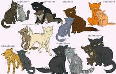 Warrior Cat couples.  Out of all these, Stormfur and Brook is probably my favourite.  My personal favourite is Hollyleaf and Fallen Leaves. :)  I love Jayfeather and Briarlight too, though.