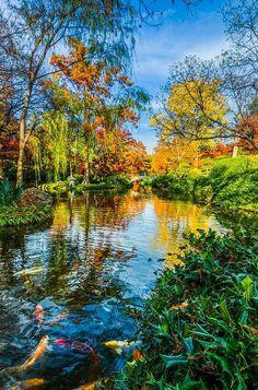Fort Worth Botanical Gardens, Texas, USA