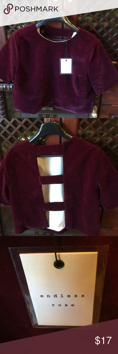 Velvet top Brand new with tags, cropped velvet top with caged back. Very cute! Endless Rose Tops Crop Tops
