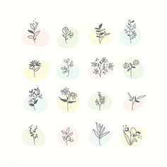 Set of hand drawn botanical elements vector 4 Image, Free Image, Mini Drawings, Free Hand Drawing, Vector Flowers, Journal Stickers, Bullet Journal Ideas Pages, Flower Doodles, Aesthetic Stickers
