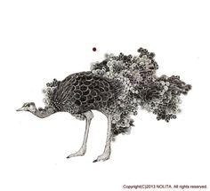 Nolita Jpn illustration drawing pencil ostrich