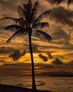 Waikiki Beach Honolulu One of my all-time favorite sunset photos