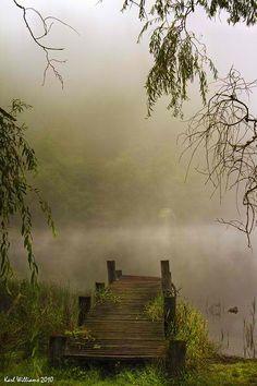 Foggy waters...