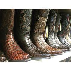 #mulpix Todo de cocodrilo   Buenas noches! #cuadra #botas #rodeo #fashion #boots #vaqueros #moda