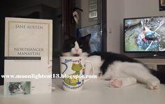 moonlightcat13: Northanger Manastırı - Jane Austen * Bahar Okuma Ş...