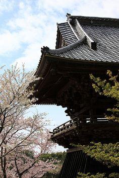 Amabiki-kannon #japan #ibaraki #sakuragawa