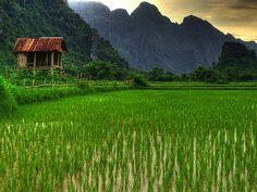 Vang Vieng Hut - Laos by landscape photography - sebastien-mamy.fr, via Flickr