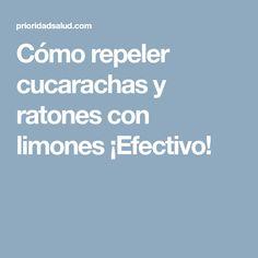 Cómo repeler cucarachas y ratones con limones ¡Efectivo! Tips, Ideas, Lifehacks, Roaches, Health, Counseling