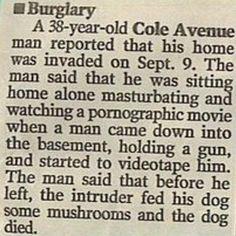 one extraordinarily odd newspaper article