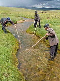 Traditional Kyrgyz fishing by zz77, via Flickr