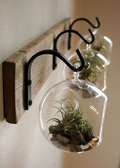Glass Globe Wall Decor mounted to recycled by PineknobsAndCrickets More
