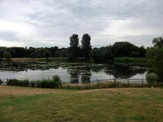 Vinnyman's Birding and Nature Blog.: Babbs Mill Nature Reserve, Solihull.