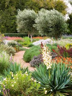 Water Wise Garden Design Guide Garden pictures Architects and