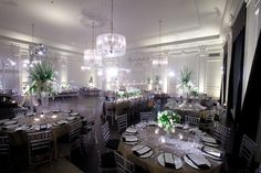 Down Town Club Philadelphia - Decor by Beautiful Blooms - Photo by Phil Kramer