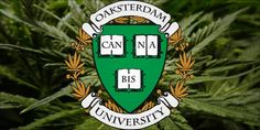Did You Know You Can Actually Attend A Cannabis College?...