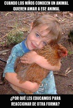 """Cuando los niños conocen a un animal, quieren amar a ese animal. ¿Por qué les """"educamos"""" para reaccionar de otra forma?"""