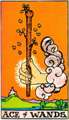 Tarot Card --