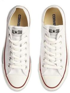 Converse All Star Trainer / Wantering
