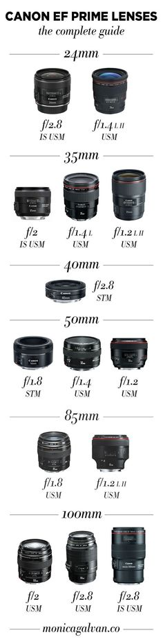 Infographic: What's a prime lens and which should you use? Check out this guide on Canon prime lenses to help you choose the best prime lens for your photography style. #cameralens