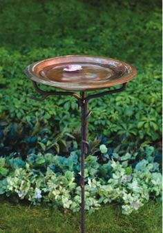 Solid Copper Bird Bath with Iron Twig Stand. Beautiful in its simplicity, this solid copper birdbath will enhance any landscape or garden while attracting more songbirds to your yard. With its rustic