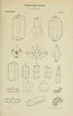 v. 10-12 1886-89 - Természetrajzi Füzetek kiadja a Magyar nemzeti Muzeum. - Biodiversity Heritage Library